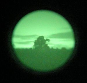 Night Vision Tree