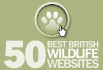 50 Best British Wildlife Websites