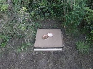 Track trap baited with food and water