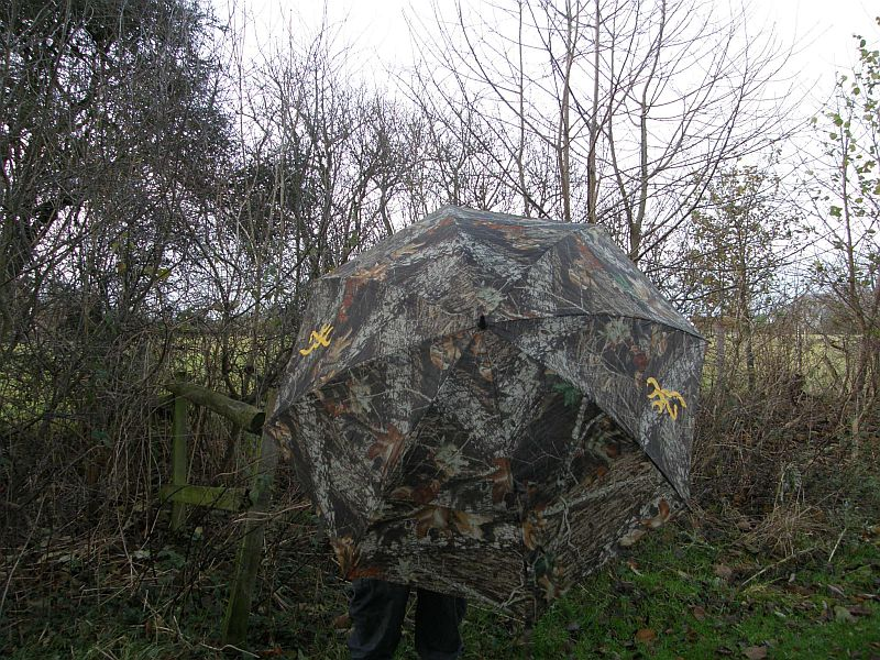 A Quiet Time And A Camouflage Umbrella Tales From The