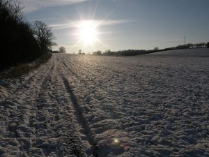 Snowy landscape in Bedfordshire