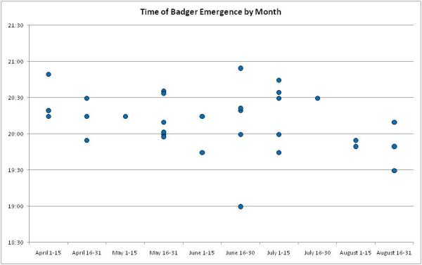 Time when badgers come out of the sett