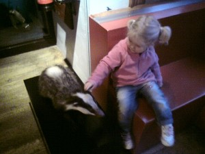 Scarlett and the Badger