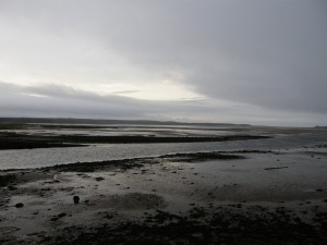 Low Tide at Malltraeth on New Year's Day