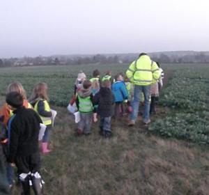 Beaver Scouts looking for Badgers