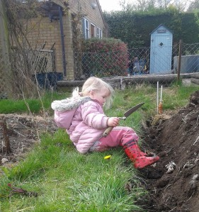 Scarlett in the Vegetable Garden