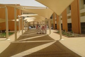A Scene in Riyadh